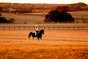 Riding at the Rockin\' P Ranch