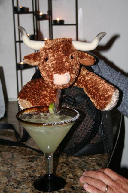 A bull walked into a bar......