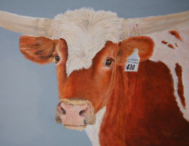 Longhorn-Oil Painting On Panel