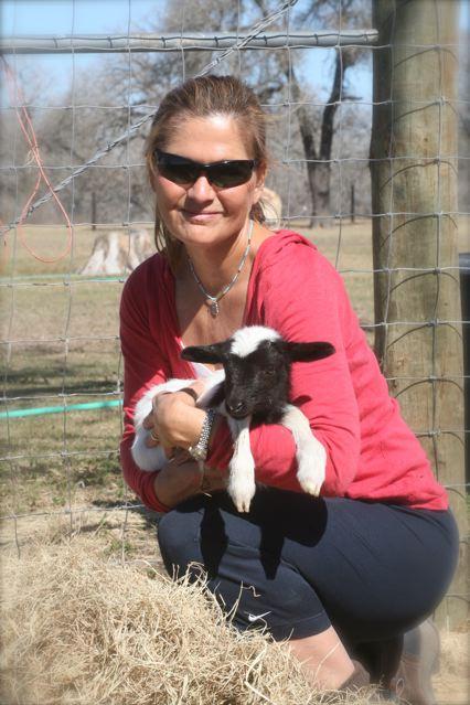 dana-newborn-lamb