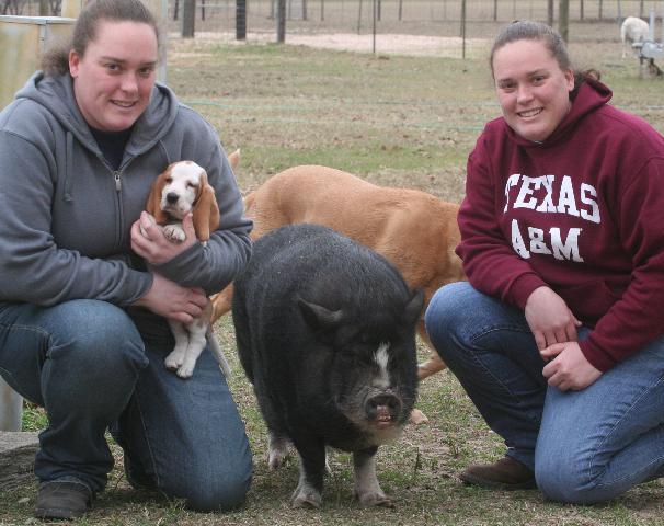 Miss Mac meets Miss Piggy