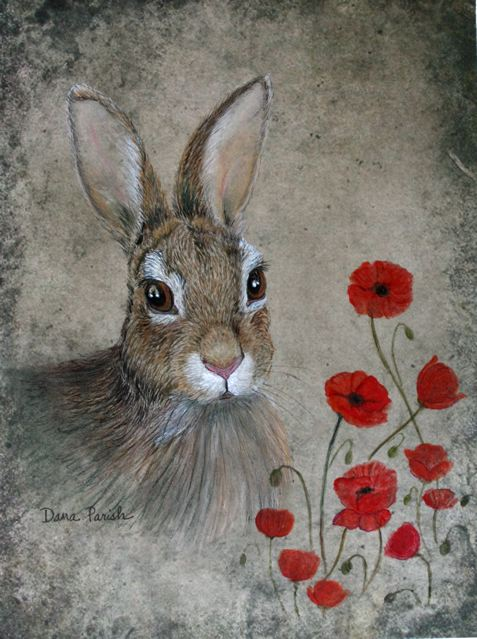 bunny and poppies med.