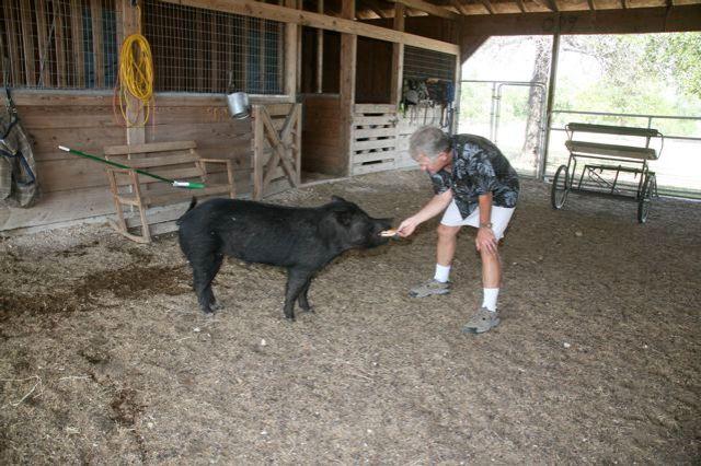 big boy bacon